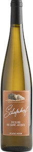 Schieferkopf Riesling Via Saint Jacques - Buy