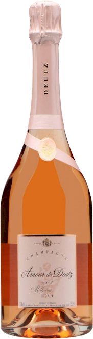 Amour de Deutz Rose